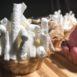 Bakkerij van eigen deeg - Petit Fours Luxe